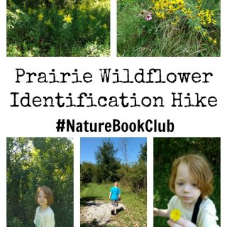 Prairie flower hike